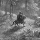 Profile photo of Okelade Pelumi