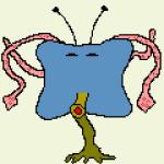 Profile picture of Stella Rush