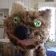 Profile picture of puppeteersofpugetsound