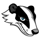 Profile picture of theBadger1