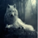 Profile photo of SeeThirty
