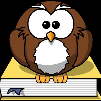 Poulomi M Reddy
