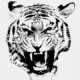 Avatar of tiger beatdown