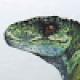 Avatar de Diego