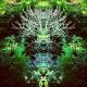 Avatar of rjdj
