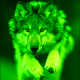 Avatar of GreeenWolf