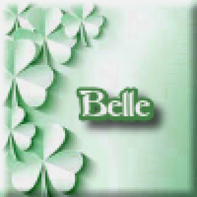 Belle Meri