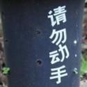 jinghli