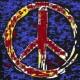 Profile picture of dakota ritchie