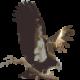 Profile picture of condor111