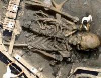 fosil raksasa rekayasa