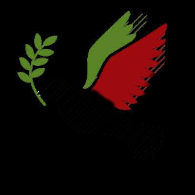 رضا غفاری