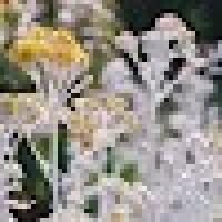 035f1cf60b7f22561601a8e7df2d0567.png?d=https%3a%2f%2ftablo.io%2fassets%2fuser avatar default square