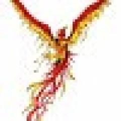 051fb454e1294431a259838e2461f52e.png?s=240&d=https%3a%2f%2fhopsie.s3.amazonaws.com%2fgiv%2fdefault avatar
