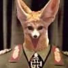 Biernot 8. avatar