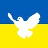 DrTod A. avatar