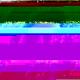 254d043c4076fbc365836e7c6d269a25