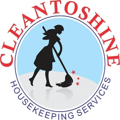 Cleantoshine15