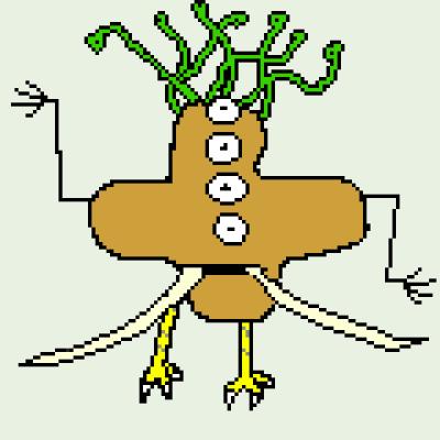 Sachi Dwivedi