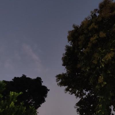 Tanvi Priya