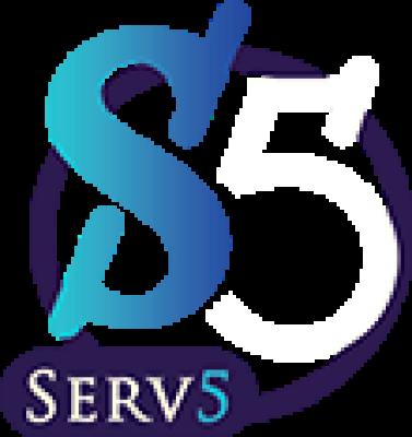 Serv5company
