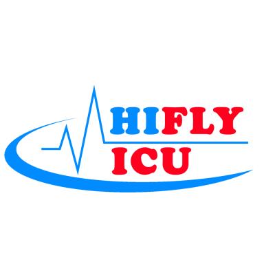 Hiflyicutrainair