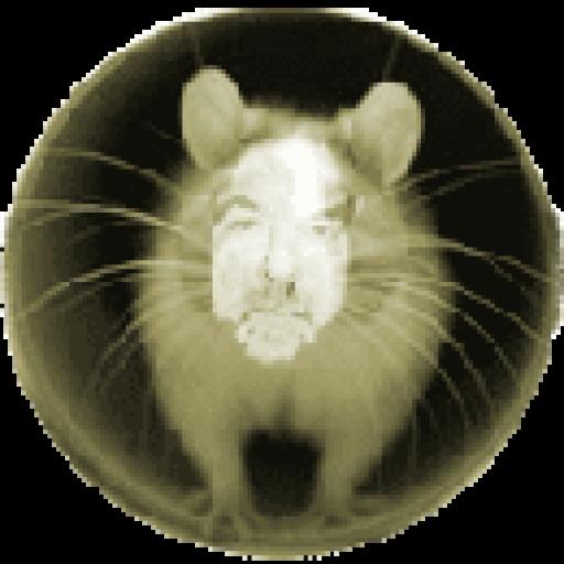 User Avatar of Jim East