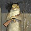 Feòrag  avatar