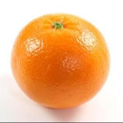 Orange_here