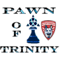 pawnoftrinity
