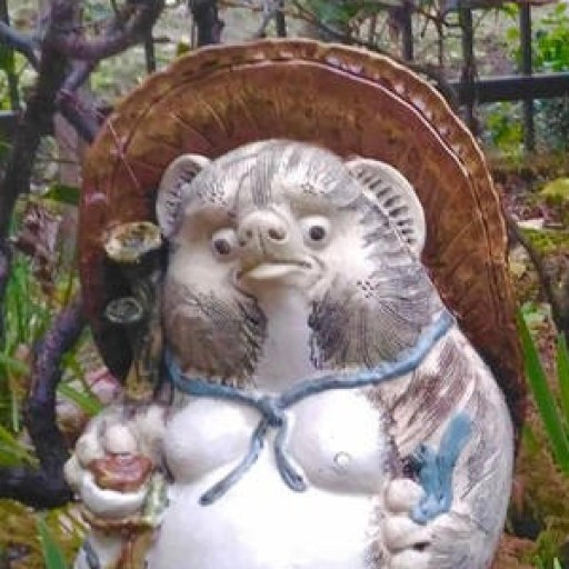 User Avatar of Masahiro Tonomura
