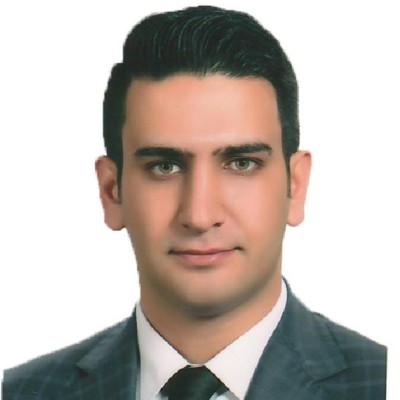 محمد رضا استکی