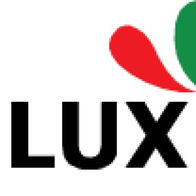 Luxpaintingaus12