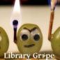 LibraryGrape