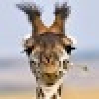 girafecosmique