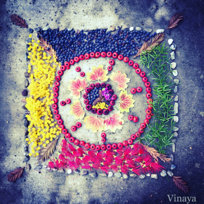 Vinaya Gokarn
